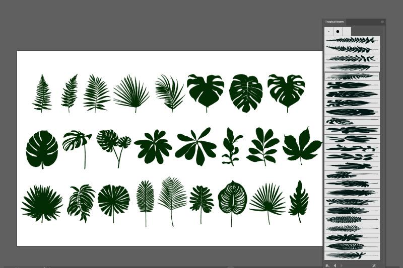 tropical-leaves-brushes-for-adobe-illustrator