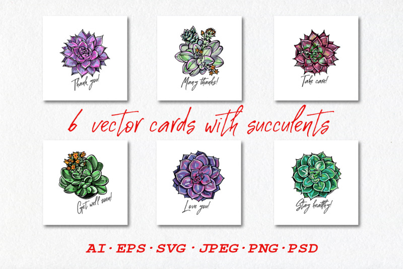 6-vector-cards-with-succulents-ai-eps-svg-jpeg-png-psd