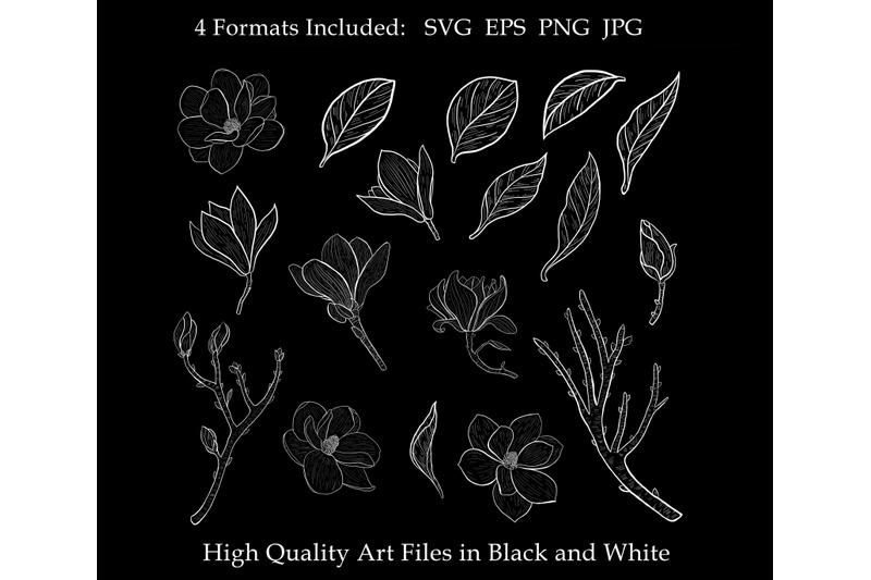 magnolia-clipart-svg-floral-leaves-flowers-botanical-decorative