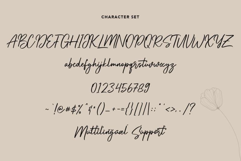 amorflavor-script-font