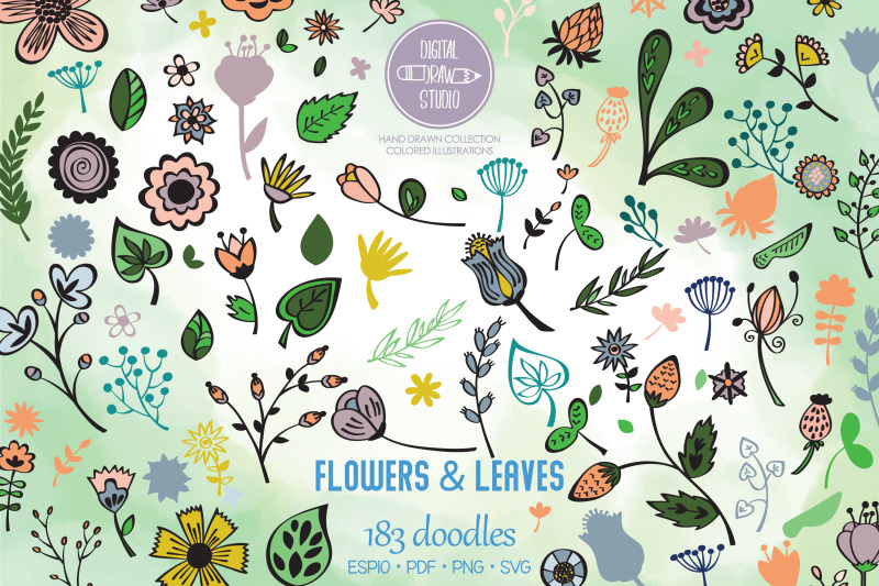 colored-flowers-amp-leaves-hand-drawn-wild-flower-nature-plants