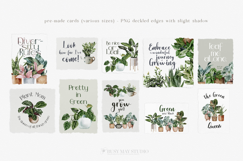 house-plants-illustrations-and-patterns-big-collection