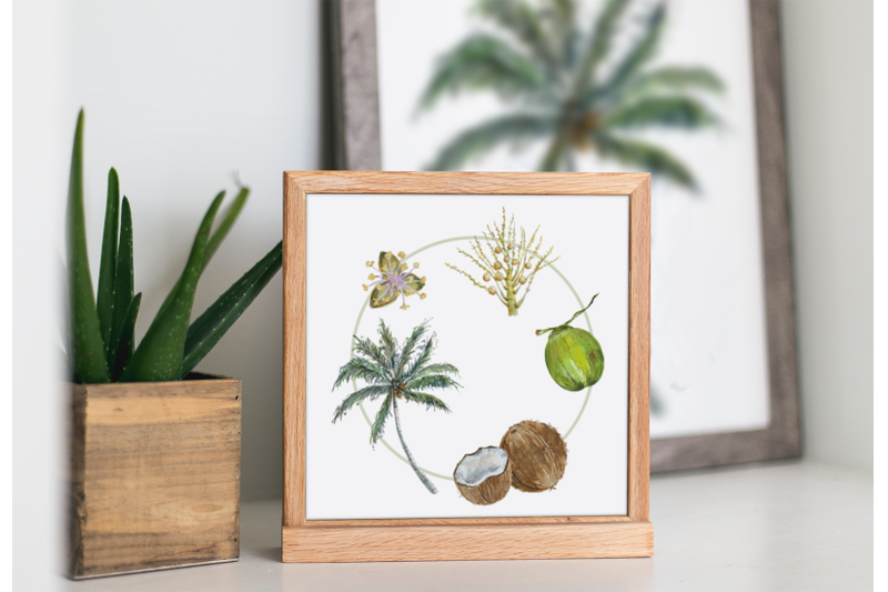 coconut-cycle-clip-arts-and-print