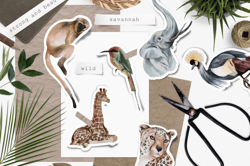 wild-animals-of-africa-illustrations-png