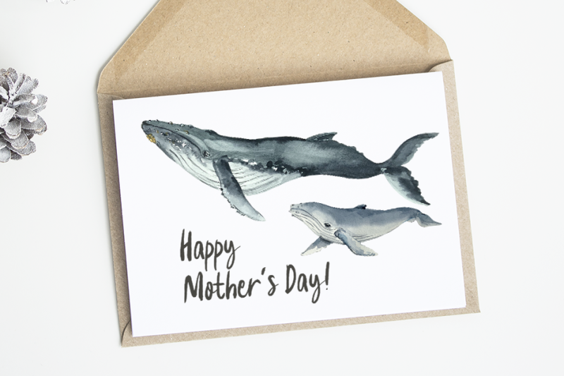 watercolor-mother-and-baby-whale-clip-arts