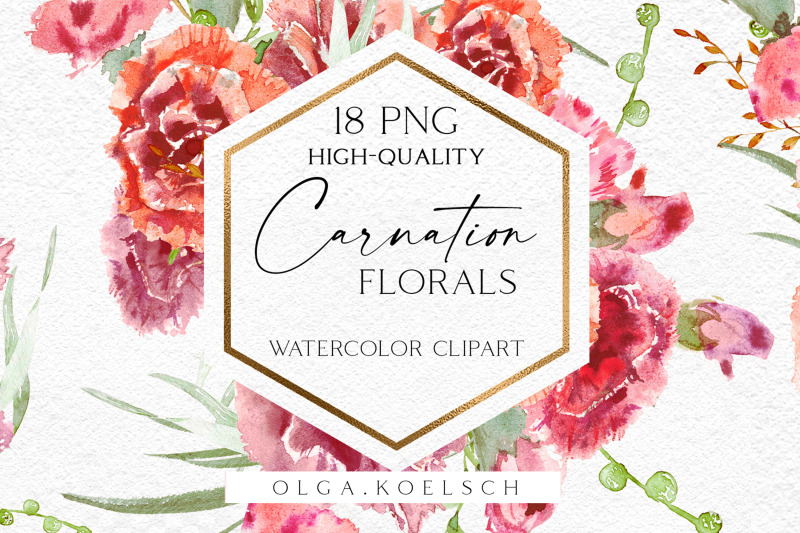watercolor-carnation-clipart-dusty-pink-carnation-for-mother-039-s-day