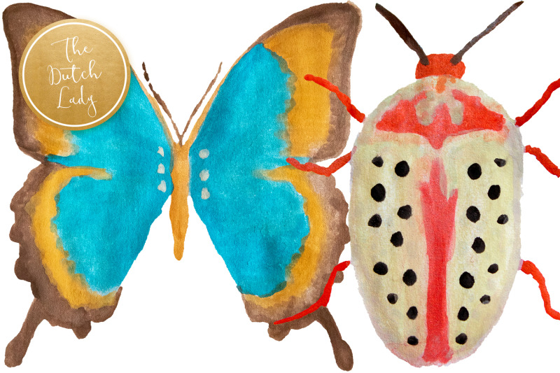 handpainted-insect-clipart-set
