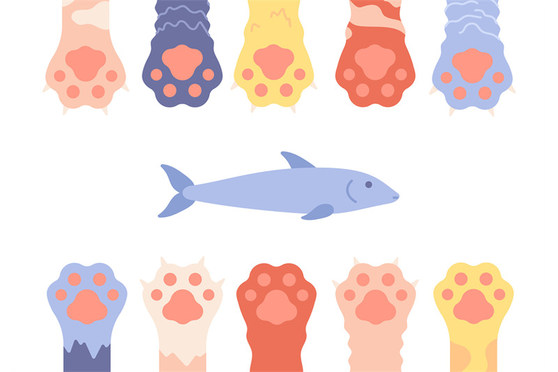 pet-paws-funny-cat-foots-background-isolated-wild-animal-legs-and-fi