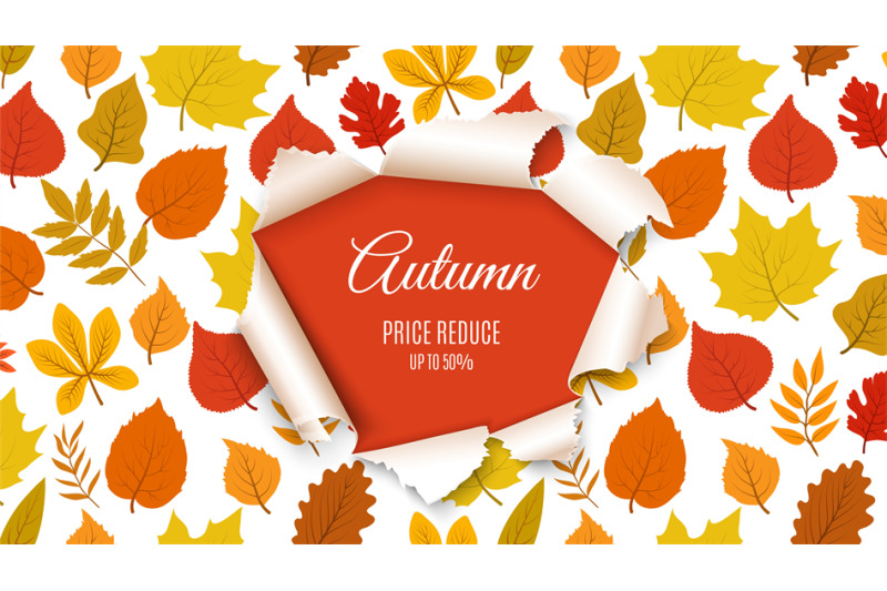 autumn-sale-banner-forest-fall-leaves-with-paper-hole-background-sea
