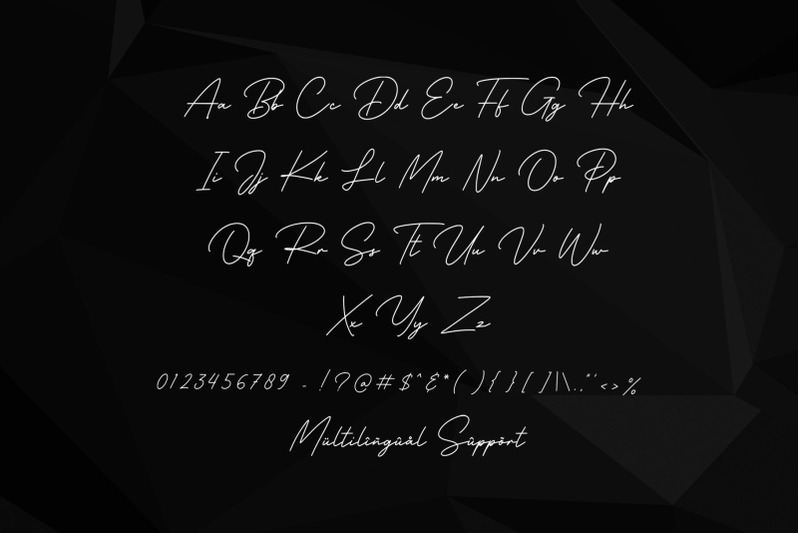 business-signature-elegant-script-font