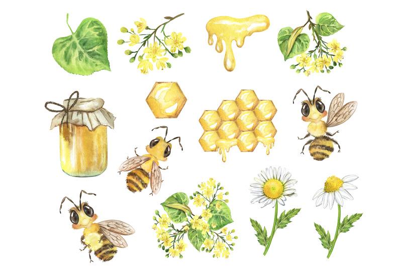 bee-watercolor-clipart-linden-flowers-chamomile-honey-jar-summer