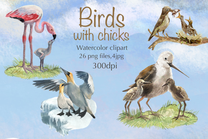 birds-mom-and-baby-watercolor-clipart