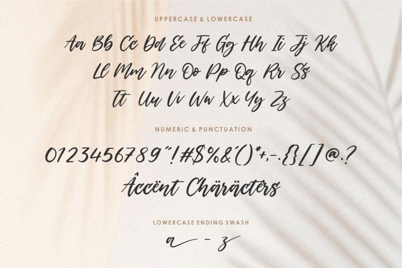 backhome-modern-handdrawn-font