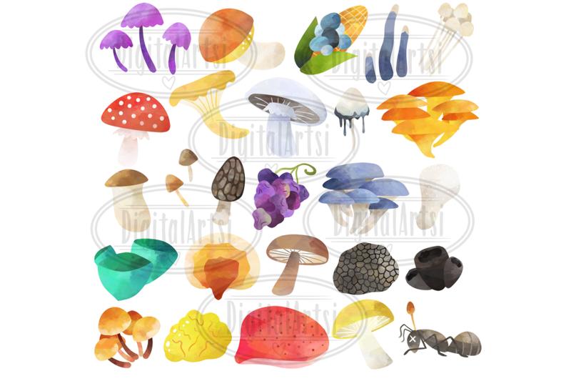 watercolor-fungi-a-z-clipart