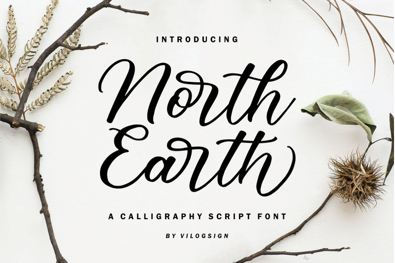 north-earth-a-beautiful-calligraphy-script-font