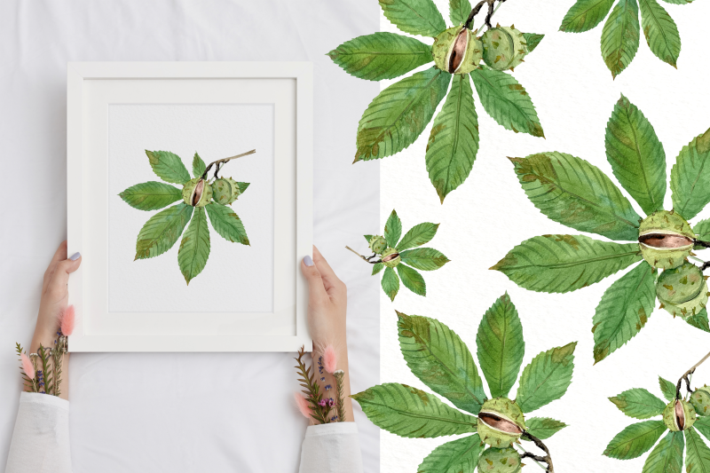 common-plants-clip-arts-and-poster