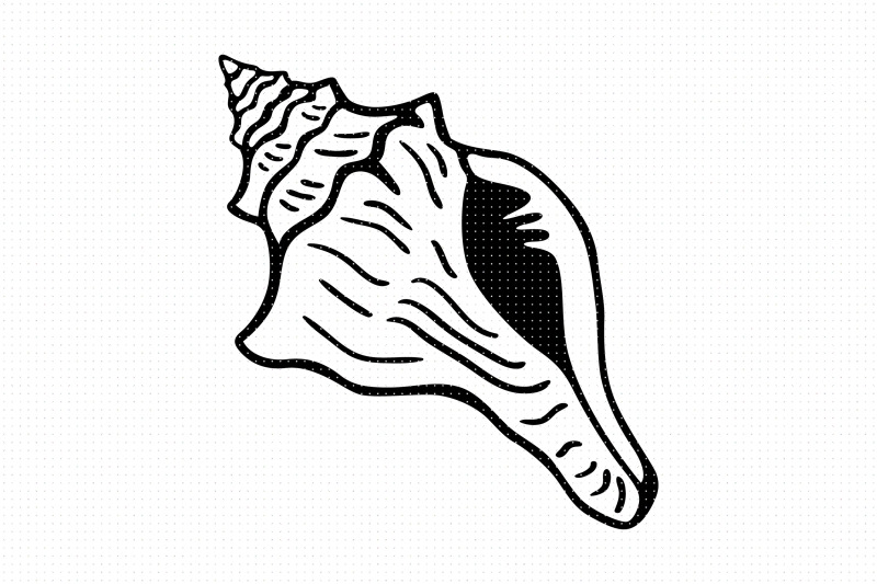 conch-shell-svg-and-png-clipart