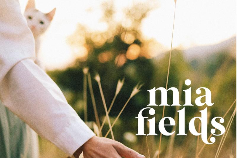 wild-mango-modern-serif-font