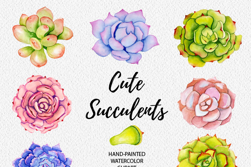 succulents-watercolor-clipart