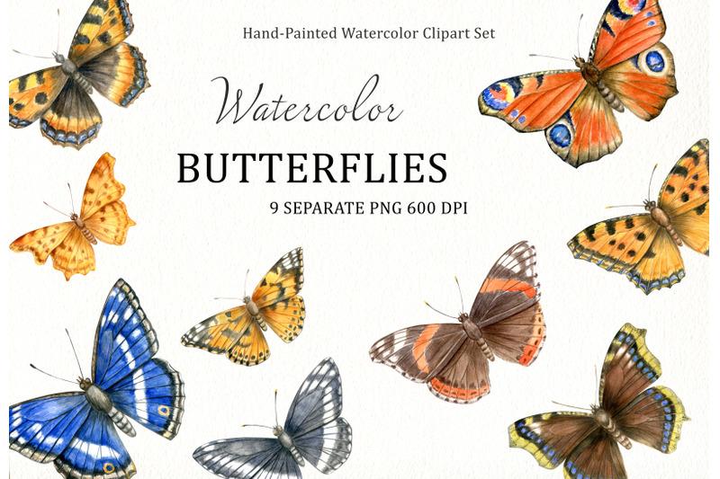 watercolor-hand-drawn-european-butterflies-clipart