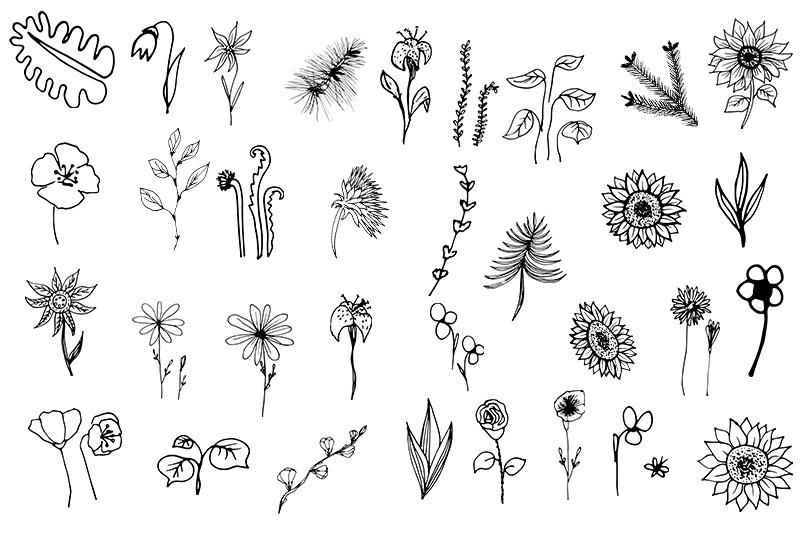 flowers-set-svg-floral-botanical-36-elements-leaves-amp-flower