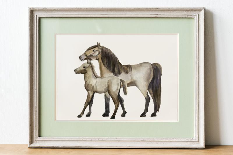 horse-life-cycle-clip-arts-and-print