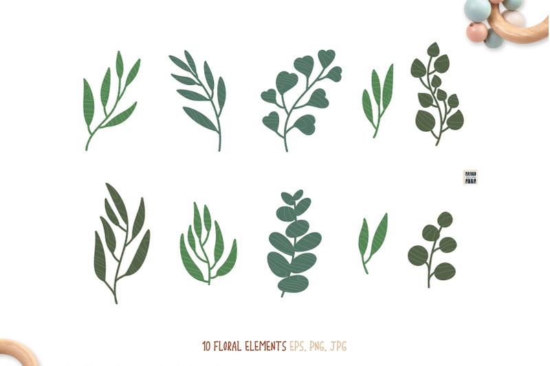 ecotoys-amp-eucalyptus-vector-clipart