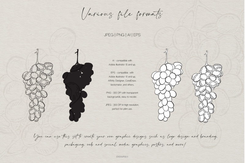 hand-drawn-fruits-and-veggies-vector-illustrations