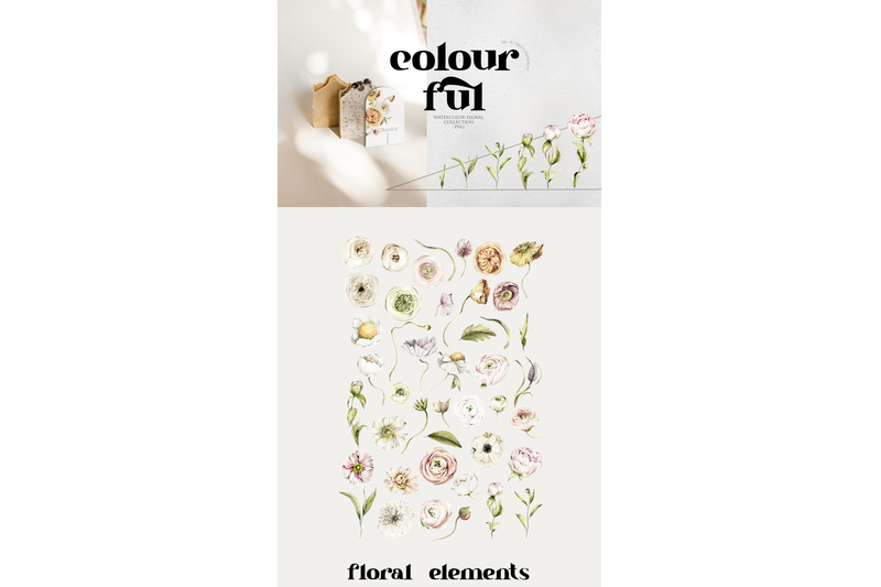 summer-botanical-flowers-watercolor-floral-clipart