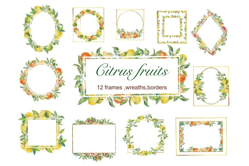 fruits-frames-png-citrus-clipart-wedding-decor