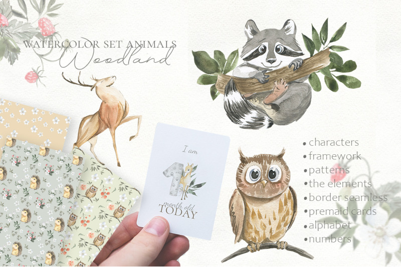 woodland-animal-watercolor