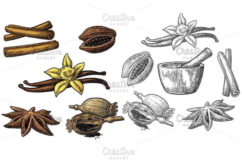 set-of-spices-mortar-and-pestle-anise-star-cinnamon-stick-fruits-of-cocoa-beans-vanilla-stick-and-flower-poppy-heads-and-seeds