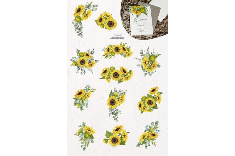 sunflower-eucalyptus-watercolor-set