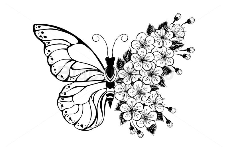 flower-butterfly-with-sakura