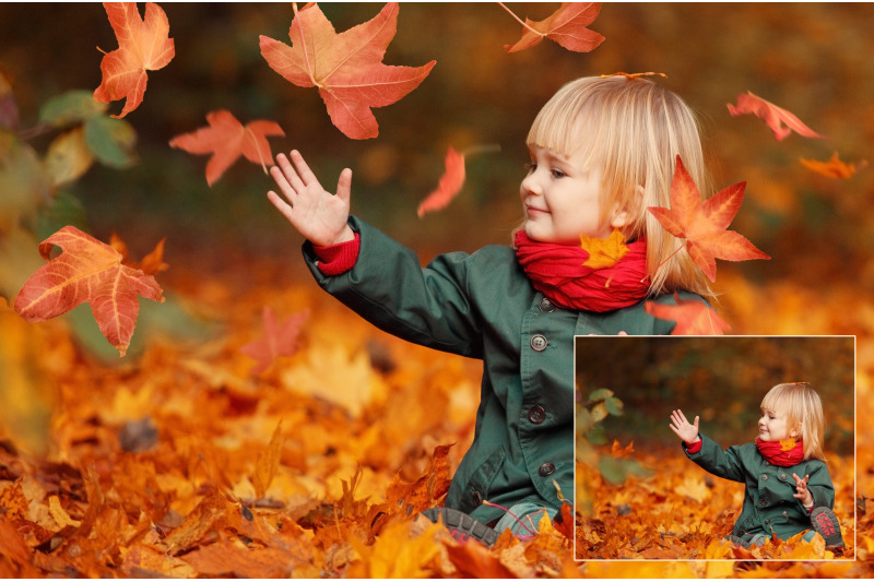 falling-autumn-leaf-overlays