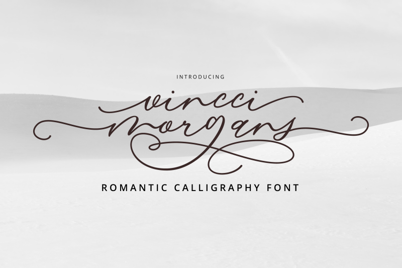 vincci-morgans-script-promo-until-september