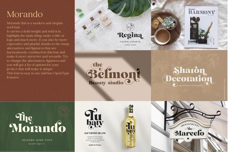 elegant-serif-bundle