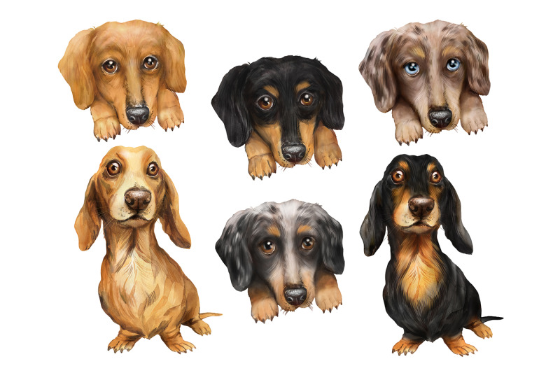 dachshund-dog-watercolor-clipart-girls-with-dogs-dog-png-clipart