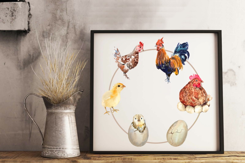 chicken-life-cycle-clip-art-stickers-and-print