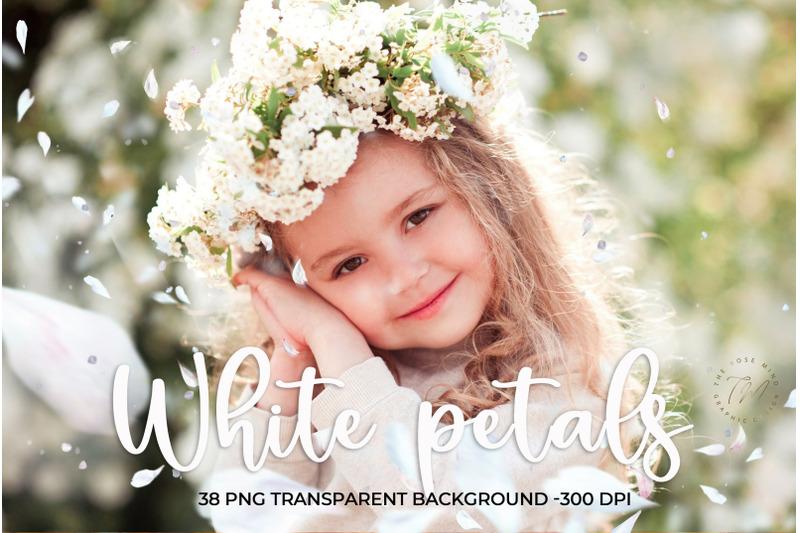 white-petals-overlays