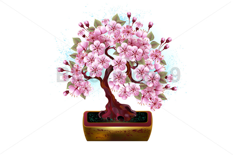 bonsai-pink-japanese-cherry