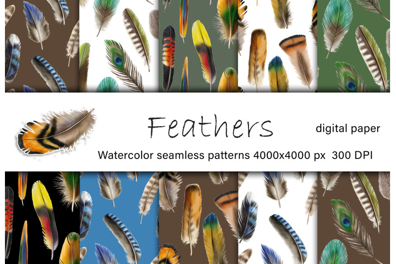 feathers-watercolor-digital-paper-feathers-seamless-patterns