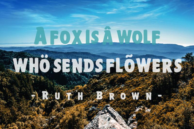 foxy-brush-bonus