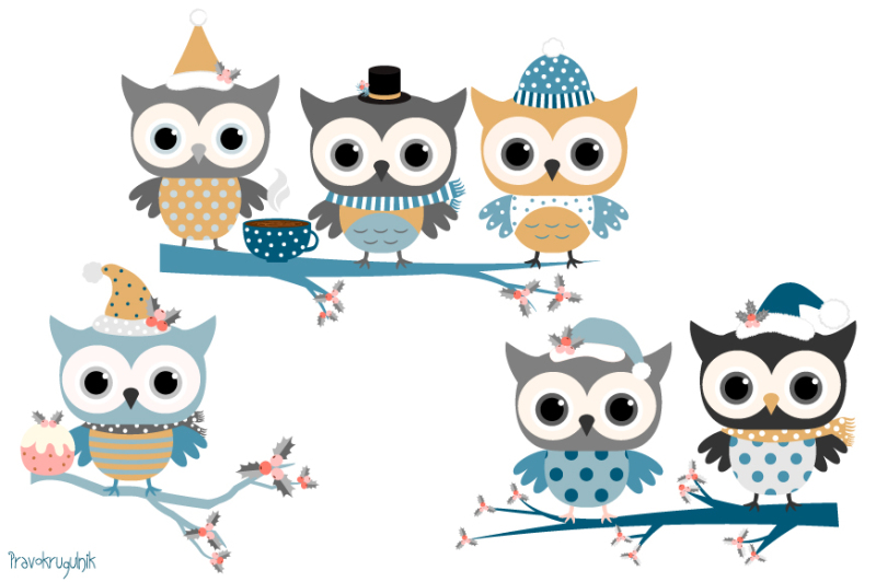 Winter owls clip art set, Holiday owl in blue colors, Cute ...