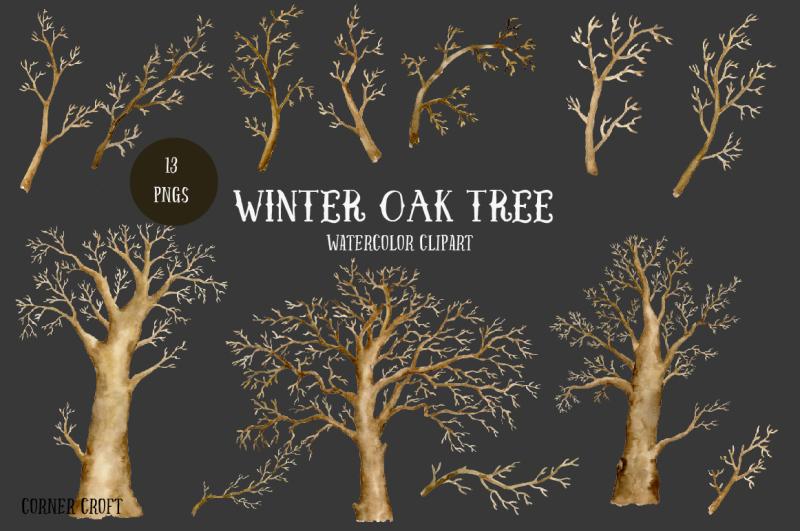 watercolor-clipart-winter-oak-tree