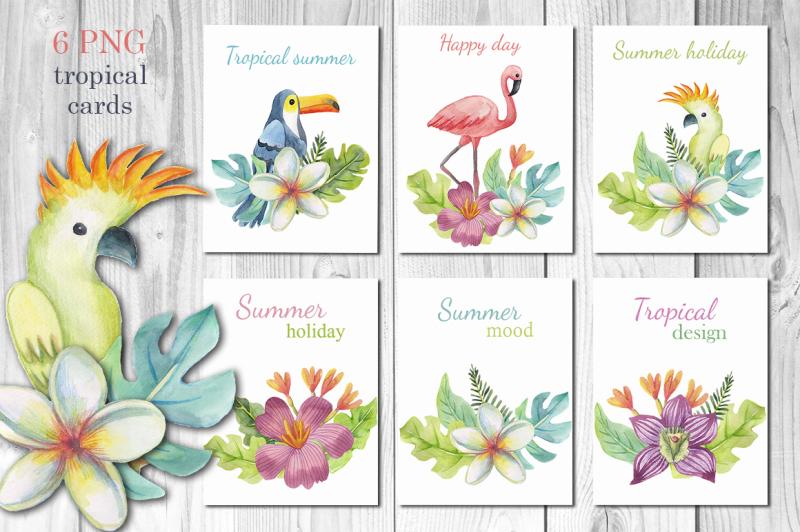 tropical-cards-set
