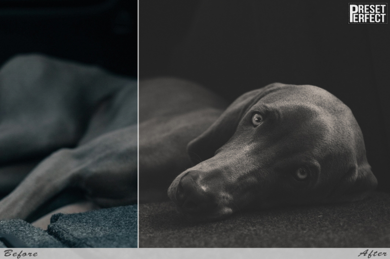 matte-lightroom-presets