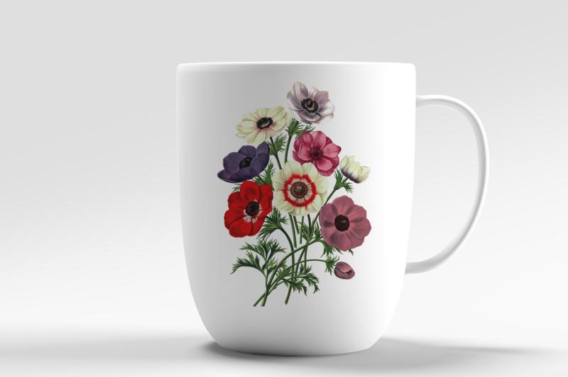 anemones-bouquet-vintage-watercolor-flowers