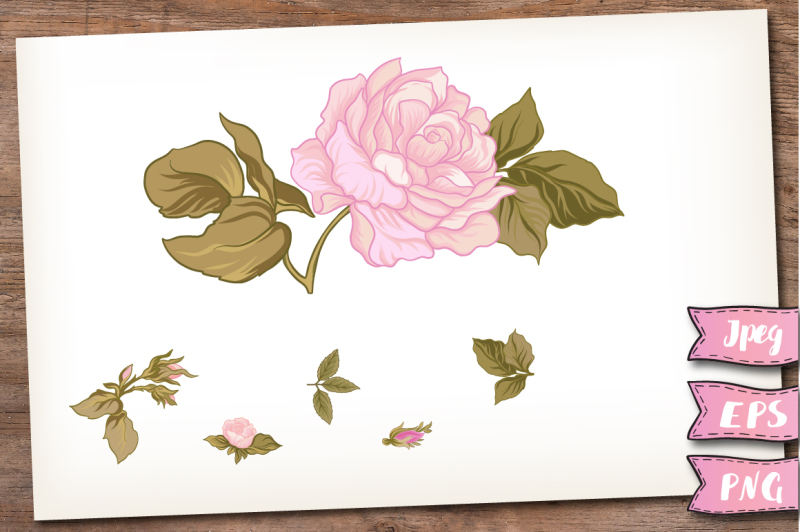 pink-roses-and-butterflies-set