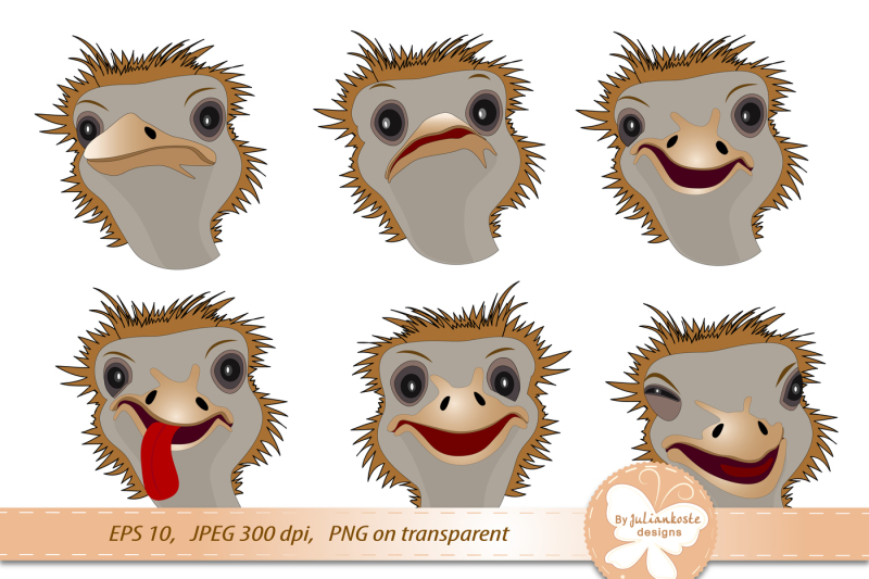 icons-in-the-form-of-an-funny-ostriches-depicting-various-emotions-archive-contains-jpeg-format-with-300-dpi-resolution-isolated-on-white-background-png-transparent-background-eps-10-for-use-in-any-desired-size